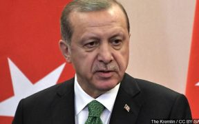 Erdogan: Turkey can go it alone to establish Syria safe zone 26