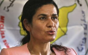 Syrian Kurdish leader: border force needed to protect us from Turkey 22