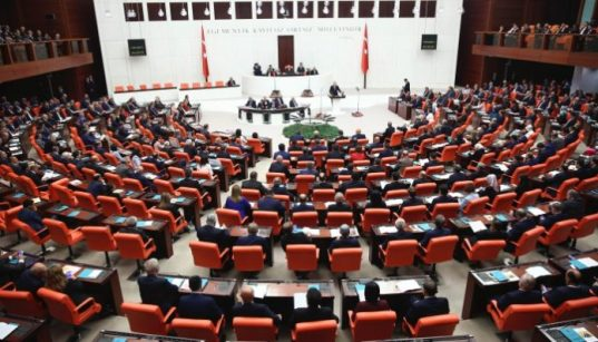 Erdoğan to further curb Turkish parliament: pro-gov't daily 41