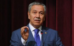 Offering apology, Erdoğan aide calls post-coup purge of public servants a 'disaster' 30