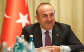 Turkish FM was recruited by jailed US lobbyist to promote Ukraine gov't at PACE: report 30