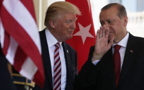 Turkey claims success treating COVID-19 with broad use of drug touted by Trump 29