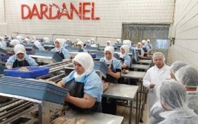 """Turkish canned fish company accused of holding workers """"captive"""" in production under quarantine operation 27"""