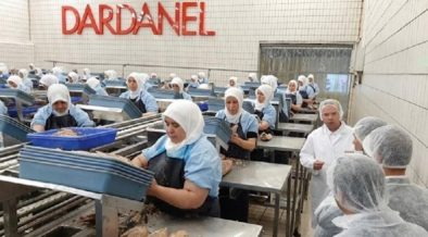 """Turkish canned fish company accused of holding workers """"captive"""" in production under quarantine operation 35"""