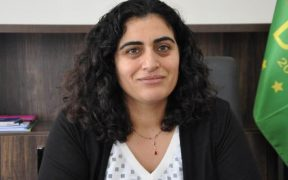 Kurdish political prisoner faces 4 additional years for calling Turkish president a misogynist 31