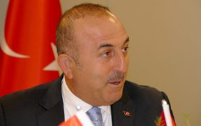 Turkish FM announces donation drive to help people affected by forest fires 23