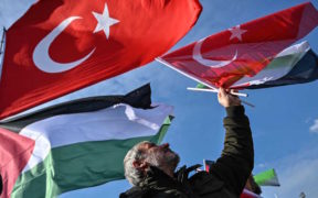 Can Turkey replace Egypt in Palestinian unity process? 21