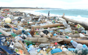 How Europe's waste ends up on Turkey's beaches 21