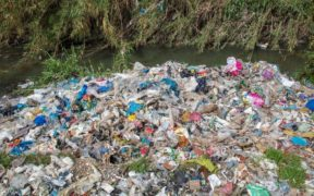 UK plastics sent for recycling in Turkey dumped and burned, Greenpeace finds 28