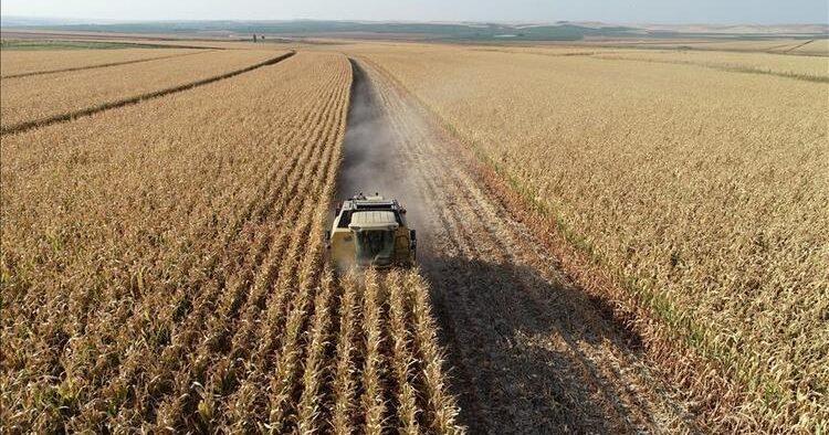 Debts of farmers in Turkey increased 72-fold in last 18 years under AKP reign 63