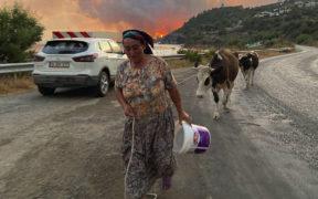 En Turquie, une centrale thermique menacée par les incendies