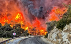 Deadly wildfire races toward Turkish power plant 23