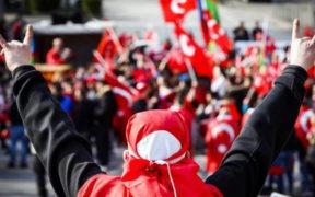 Do Turkey's Grey Wolves deserve terrorist designation? - by Michael Rubin 21